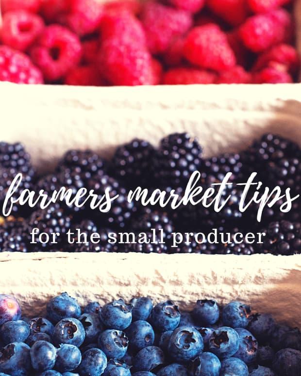 farmers-market-tips-for-the-small-gardener-and-farmer