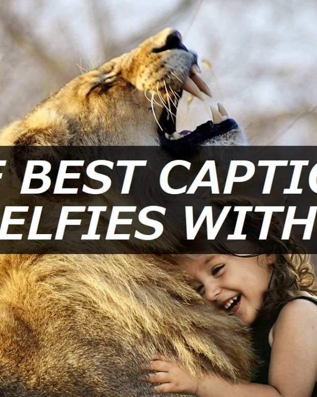 best-captions-for-selfies-with-cats