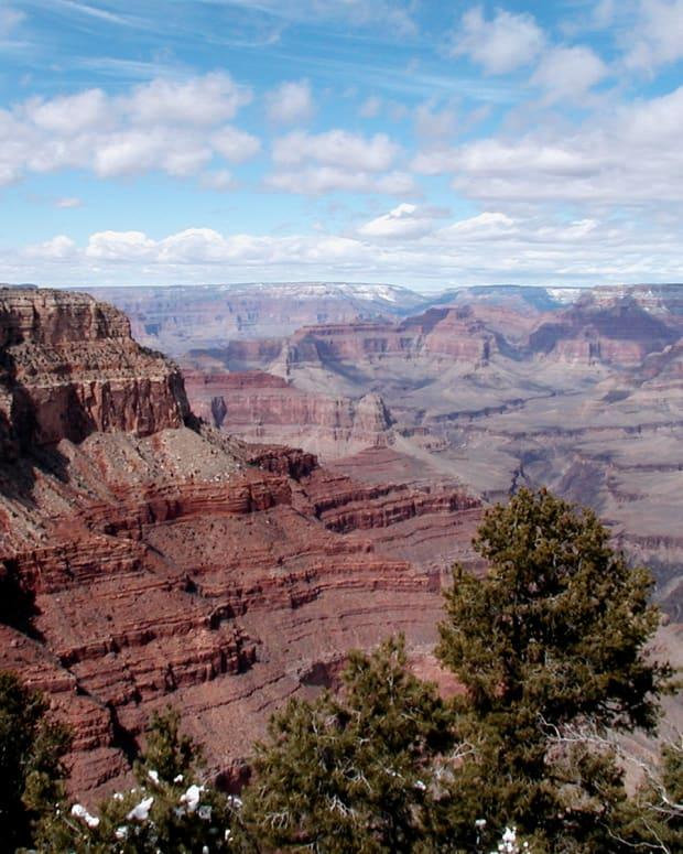 tips-for-the-national-park-sightseer