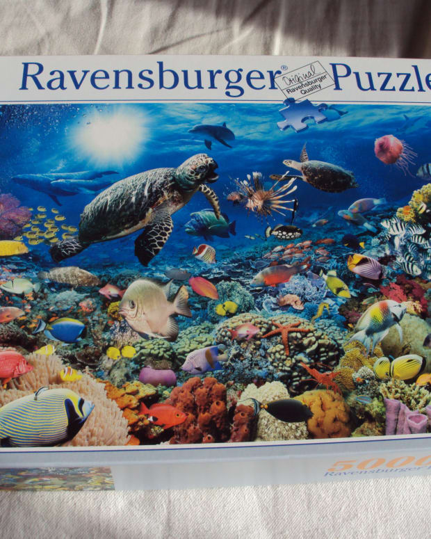 how-to-build-a-5000-piece-ravensburger-jigsaw-puzzle