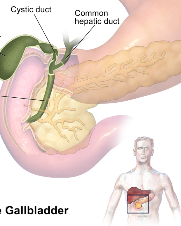 gall-bladder-functions-and-problems