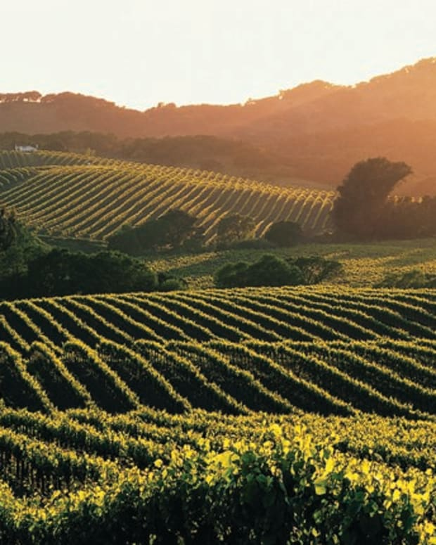 self-guided-driving-tour-of-napa-valley-wine-country