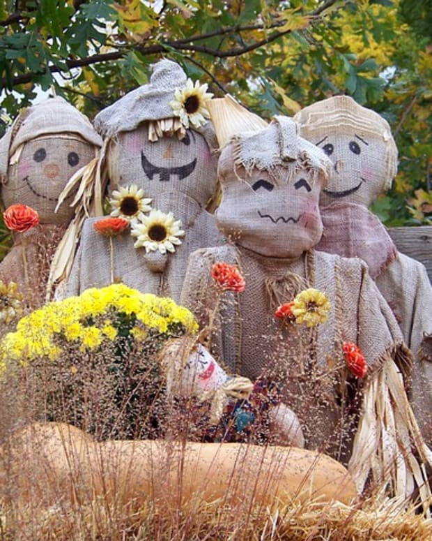-how-to-make-a-homemade-scarecrow