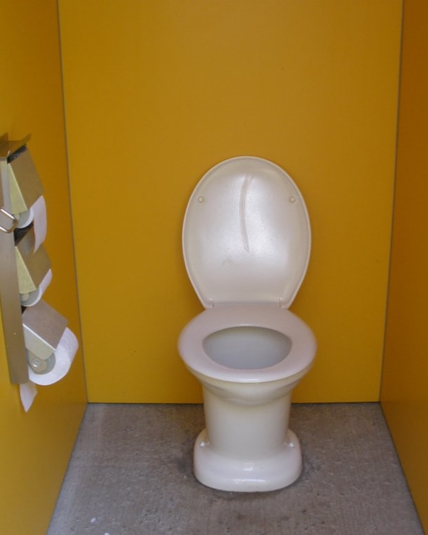 the-toilet-lid-must-be-put-down-heres-why