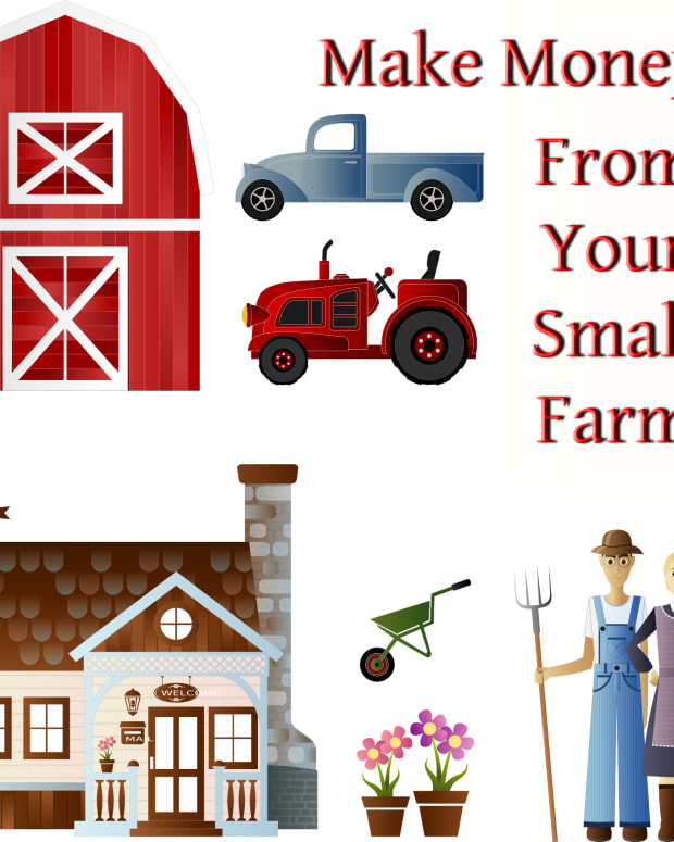 small-farms