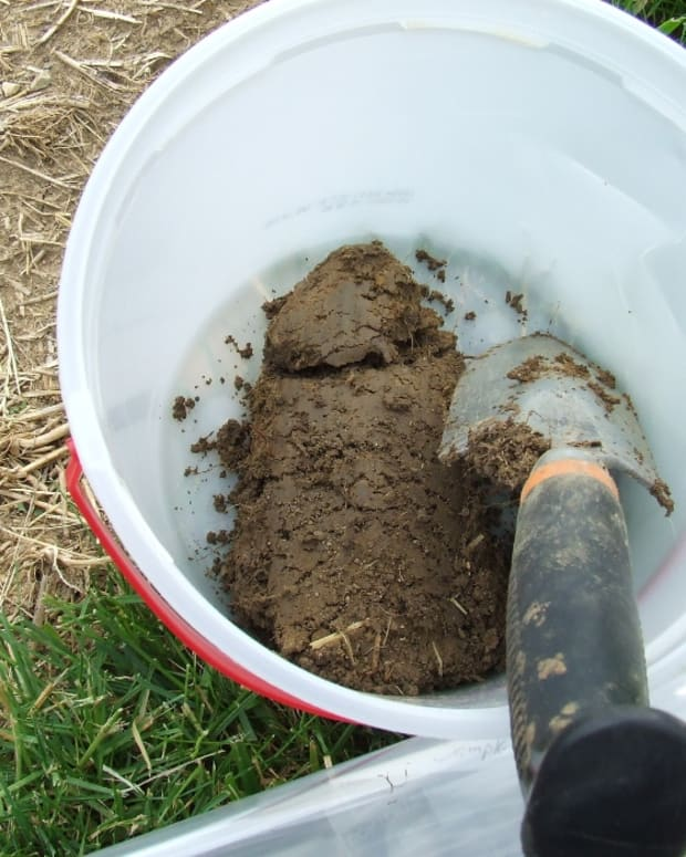 making-using-soil-samples