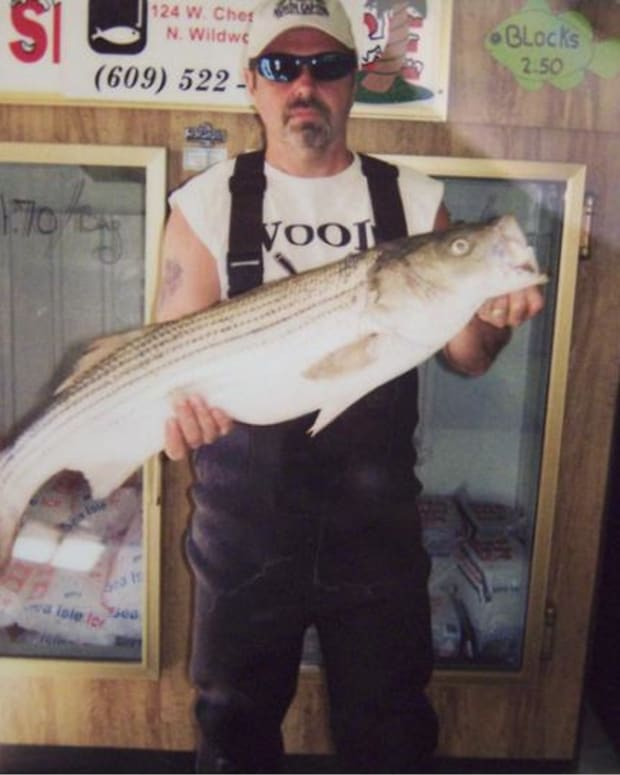 how-to-catch-a-striper-striped-bass