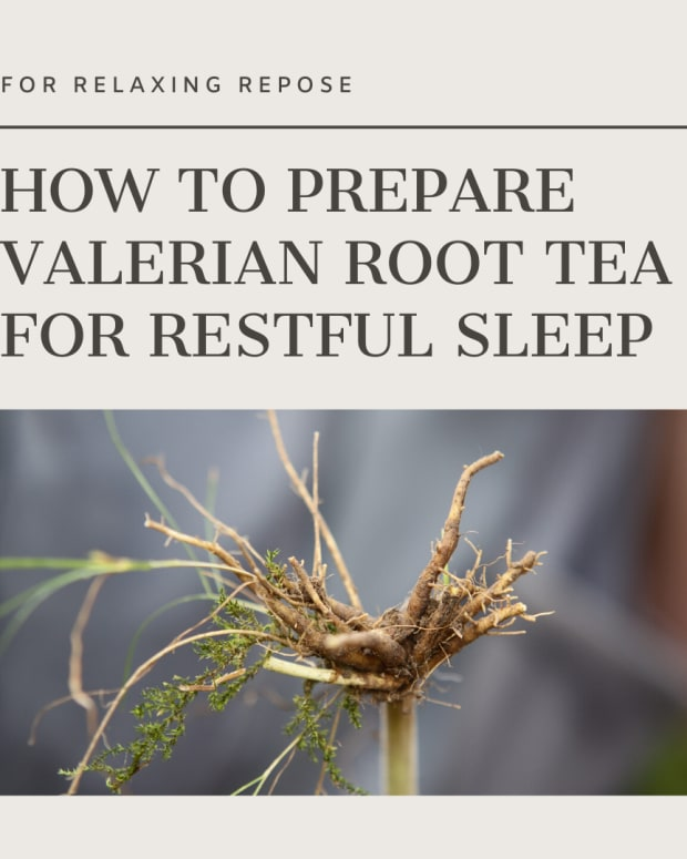 how-to-prepare-valerian-root-tea