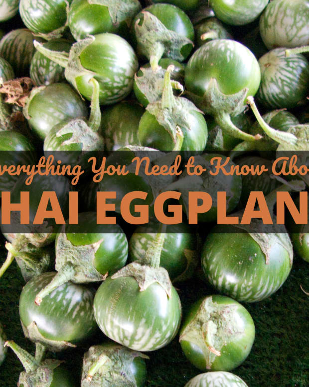 thai_eggplant