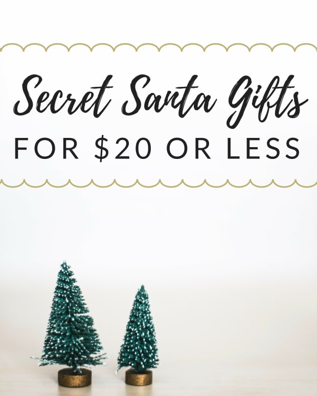 secret-santa-gift-ideas-coworkers-under-20