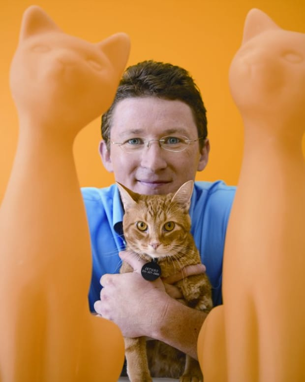 arthritis-pain-relief-for-dogs-interview-q-a-with-dr-jules-benson-of-petplan