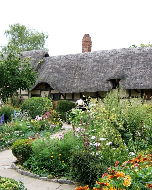 an-english-cottage-garden-10-traditional-plants
