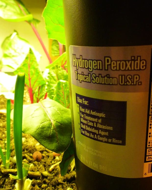 hydrogen-peroxide-for-plants