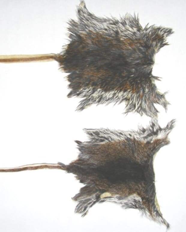 mice-skinning