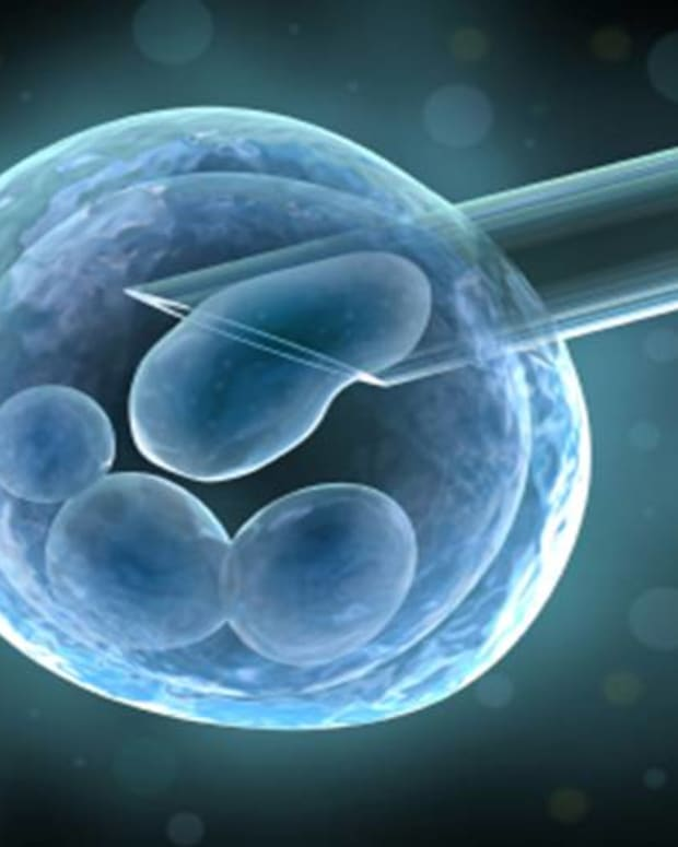 ethical-problems-of-human-embryonic-stem-cell-use-in-scientific-research