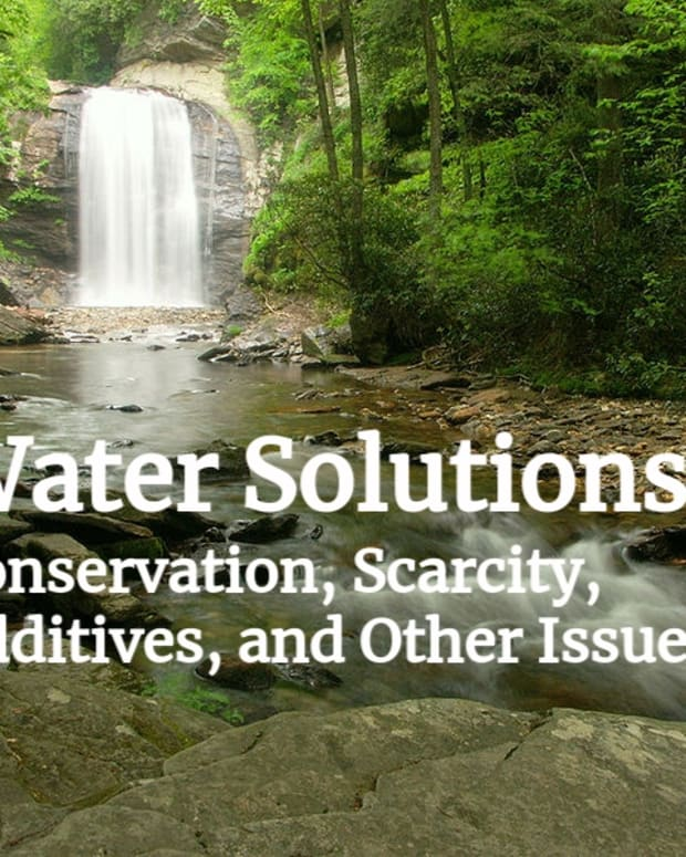 why-water-is-our-most-precious-resource