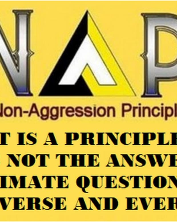 surprise-the-non-aggression-principle-is-a-principle-not-a-philosophy
