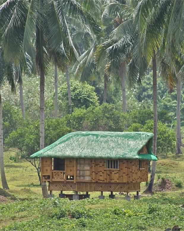 vegetables-on-philippine-folk-song-bahay-kubo-nipa-hut