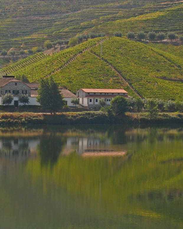 wineries-in-portugal-for-beginners-portuguese-wine