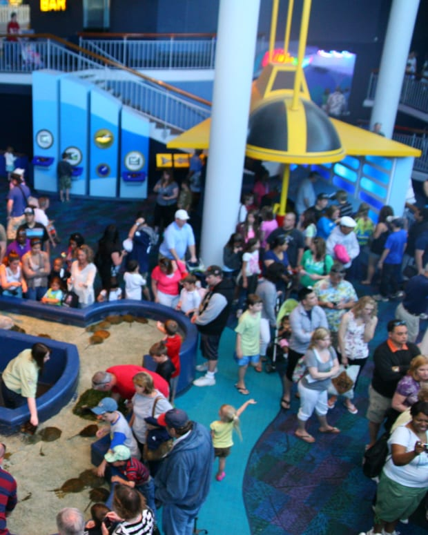 ripleys-aquarium-in-myrtle-beach-a-myrtle-beach-attraction-review