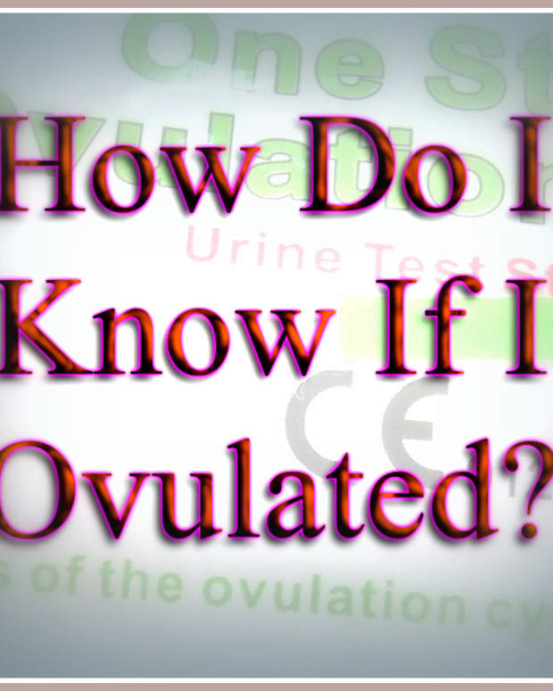 how-do-i-know-i-ovulated