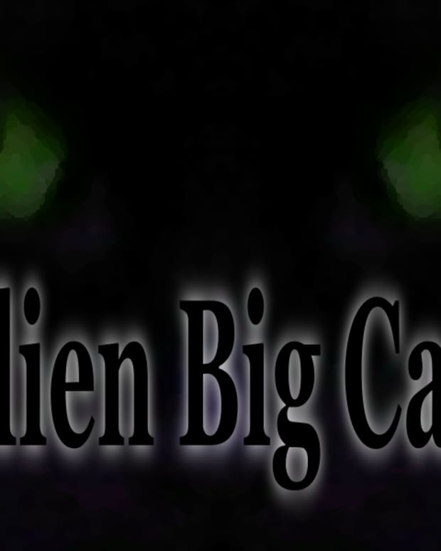 alien-big-cats-phantom-cats-around-the-world