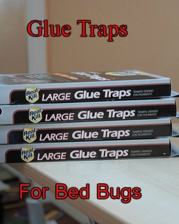 bed-bug-products-traps