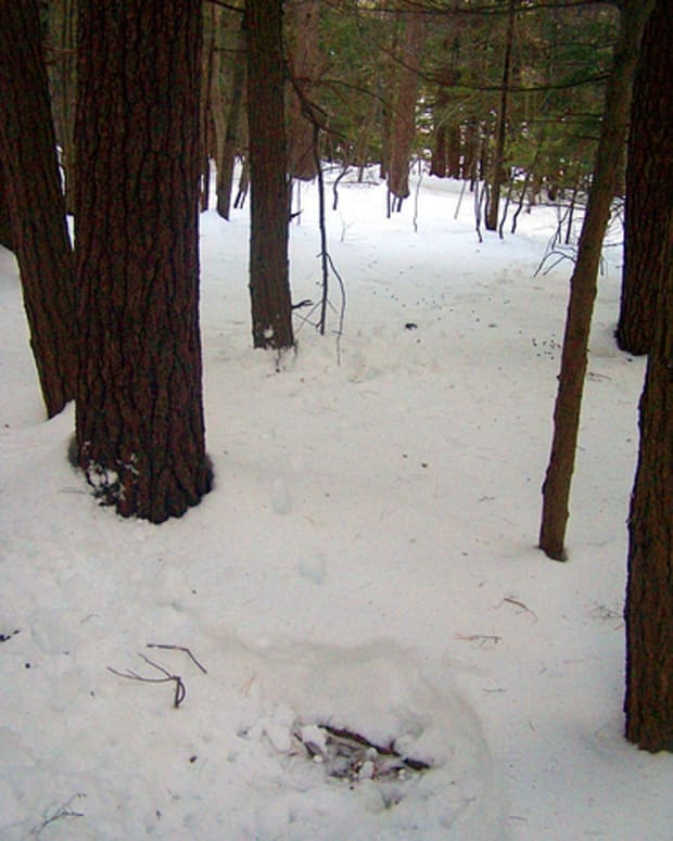 analysis-of-tobias-wolffs-hunters-in-the-snow