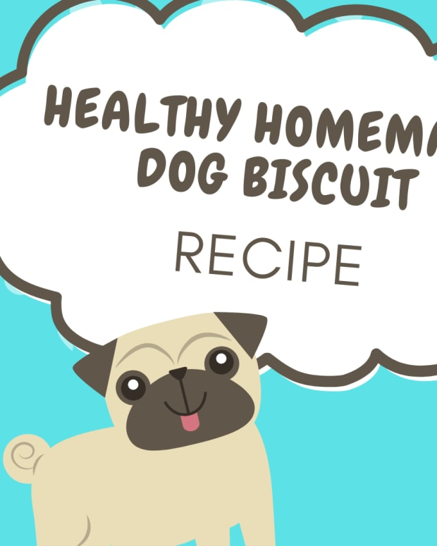 how-to-make-homemade-dog-biscuits