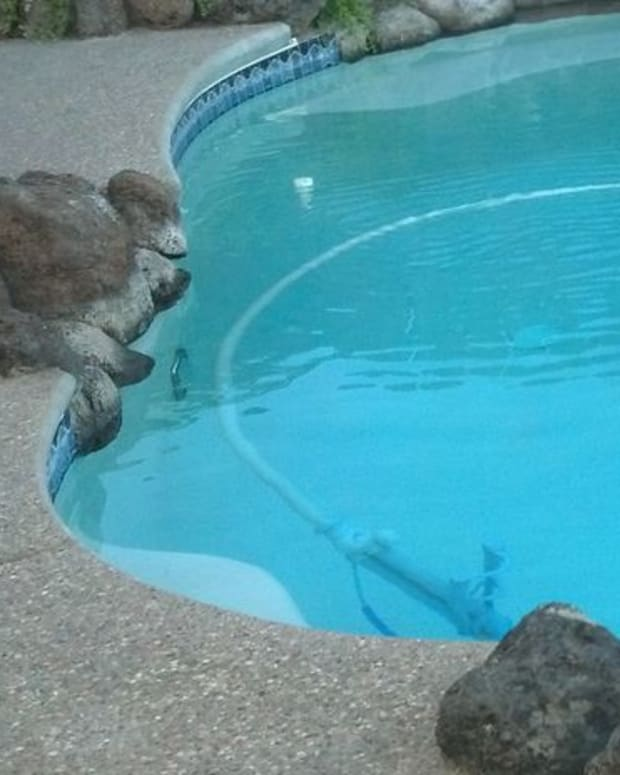 how-to-fix-a-low-pressure-swimming-pool-pump