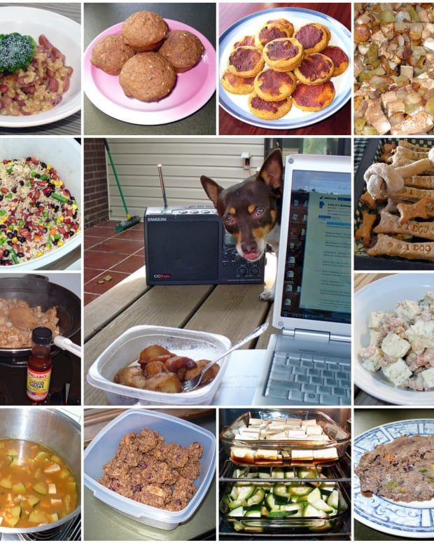 how-to-make-healthy-homemade-dog-food