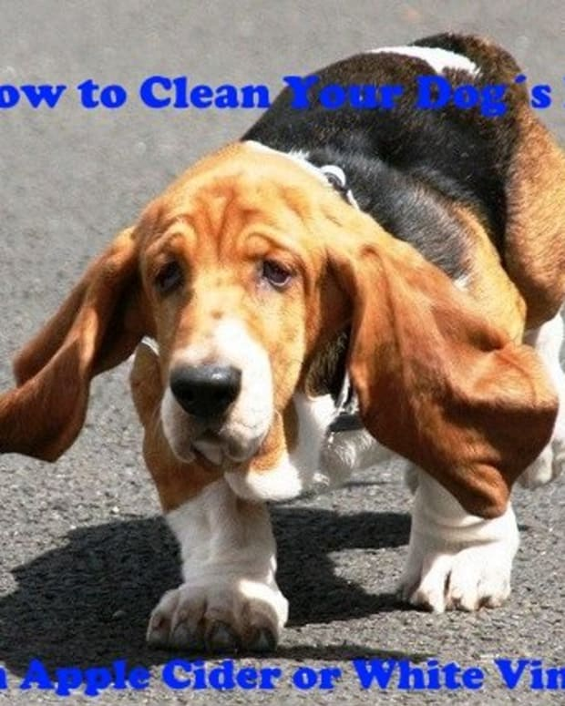 how-to-clean-ears-with-vinegar