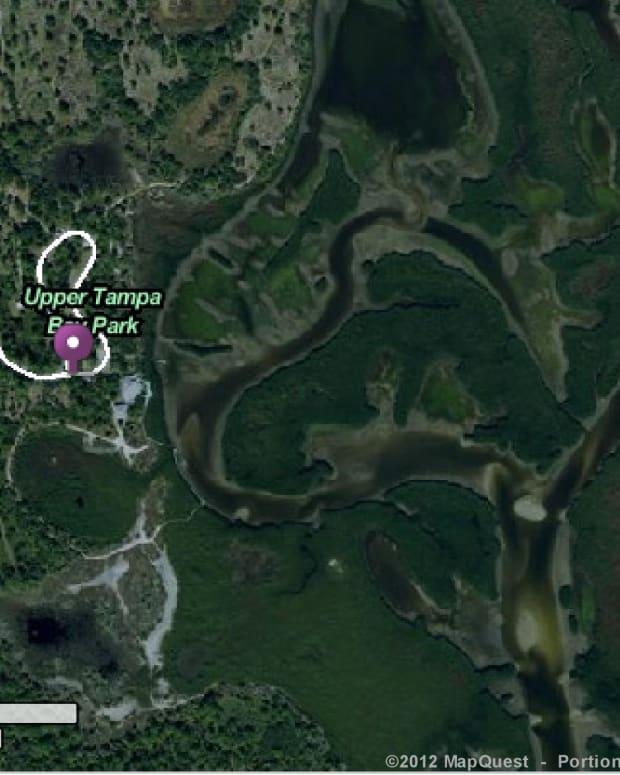 kayaking-adventure-in-upper-tampa-bay