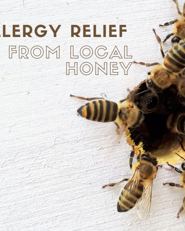local-raw-honey-for-allergies