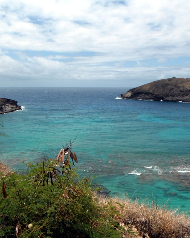 hanauma-bay-snorkeling-in-oahu