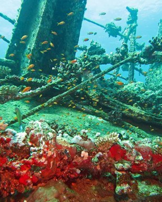 shipwreck-diving-in-red-sea-jeddah