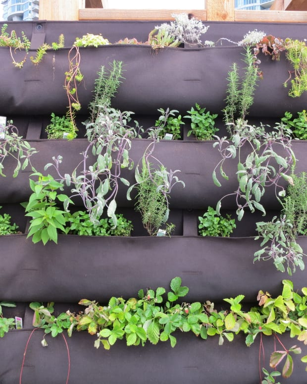 how-to-build-a-vertical-vegetable-garden