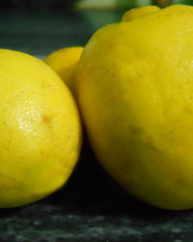 lemonbenefitsonskinlemonfacemasksathome