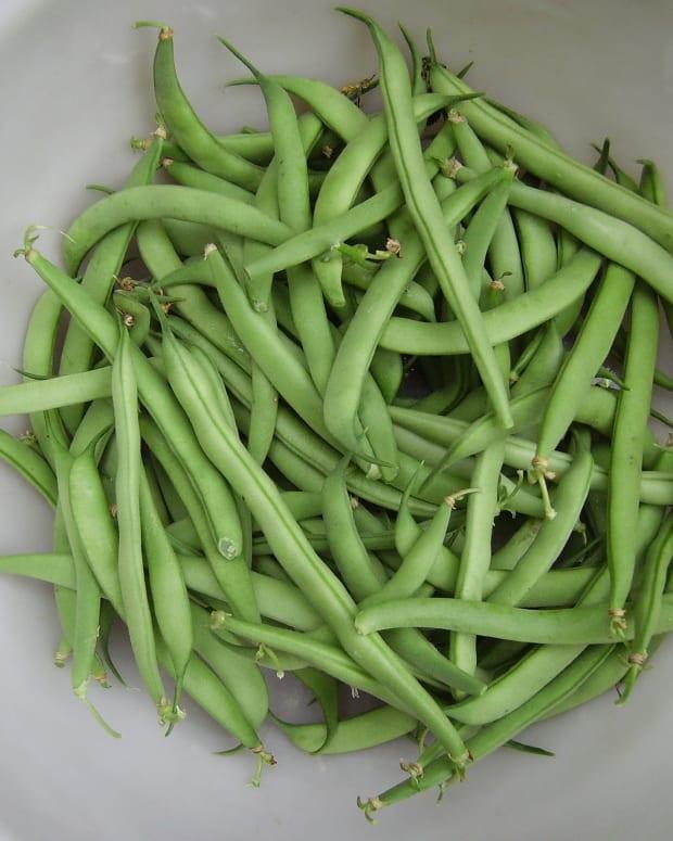 how-do-you-freeze-fresh-green-beans