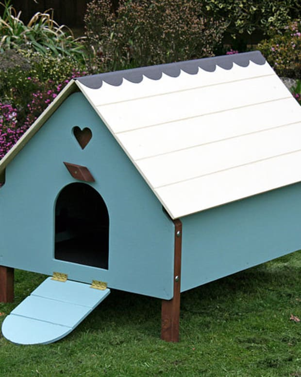 how-to-build-a-movable-chicken-coup-or-chicken-tractor
