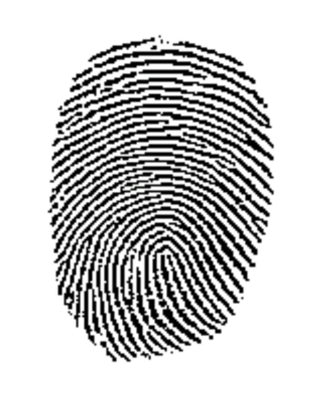 what-your-fingerprints-say-about-you