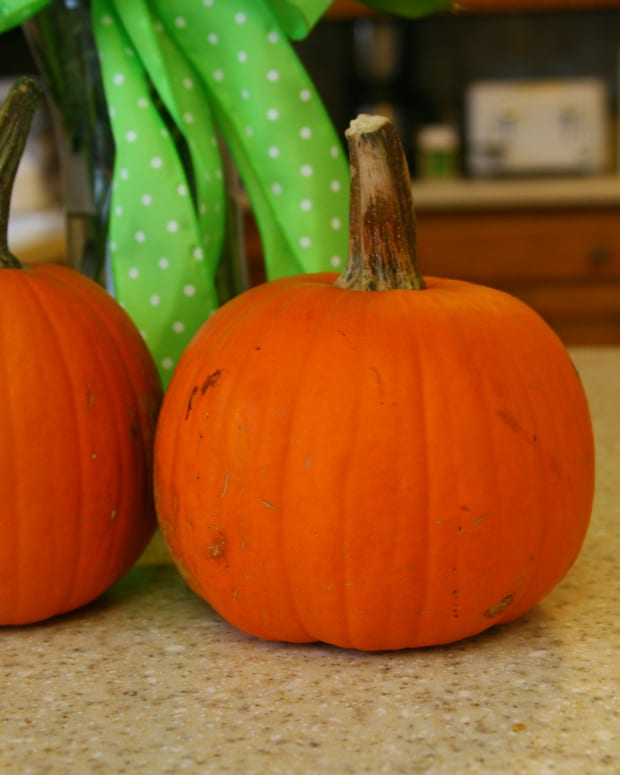 how-to-make-fresh-pumpkin-puree