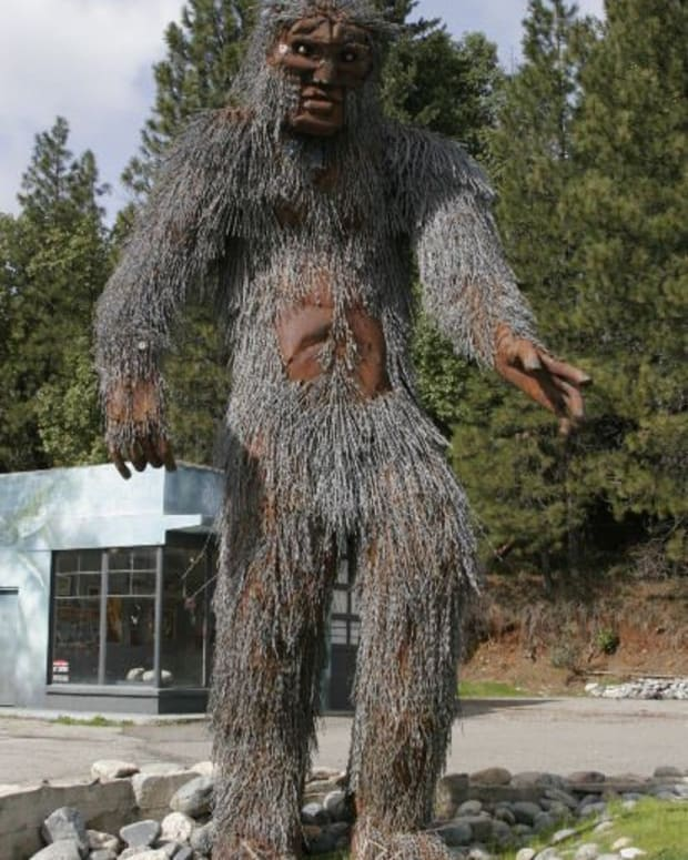 is-bigfoot-real-bigfoot-facts-and-theories-for-skeptics
