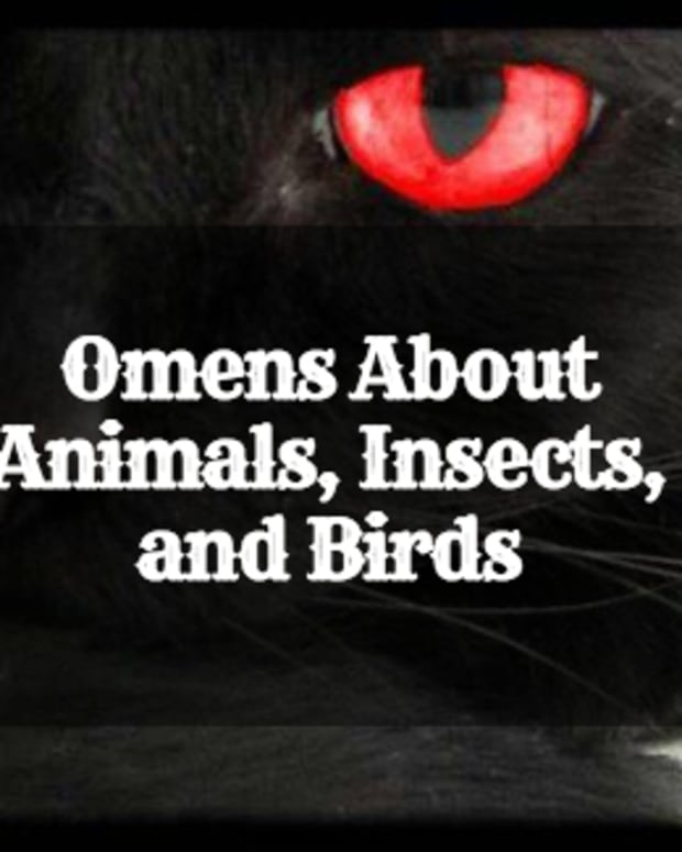 omens-oracles-and-signs-are-you-superstitious
