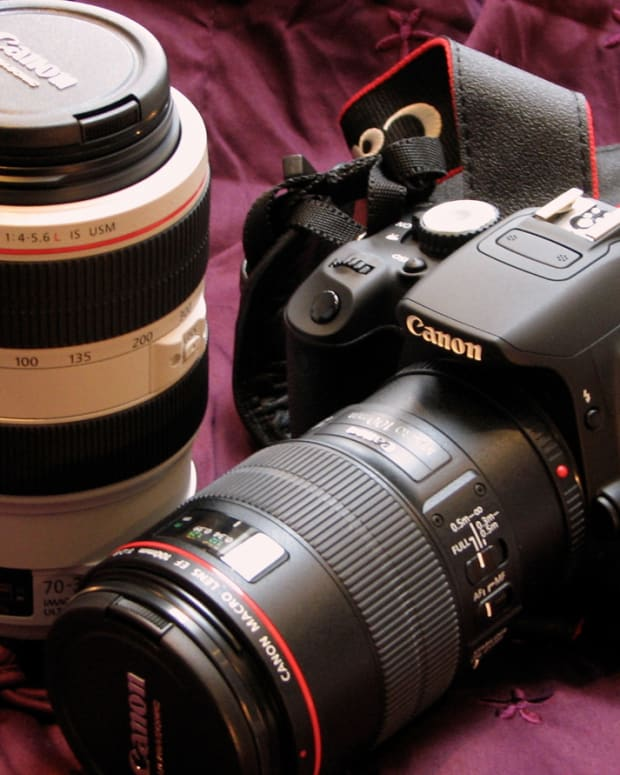 guide-to-digital-slr-lenses
