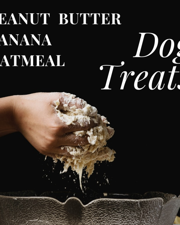 peanut-butter-banana-oatmeal-dog-treats