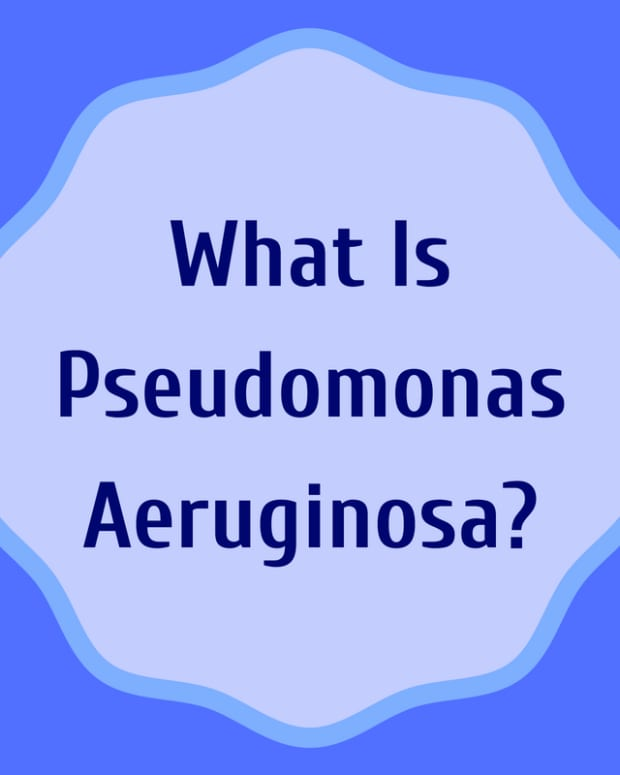 pseudomonas-infection-symptoms-treatment-self-help