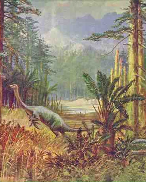 mokele-mbembe-and-other-dinosaurs-still-alive-in-africa-today