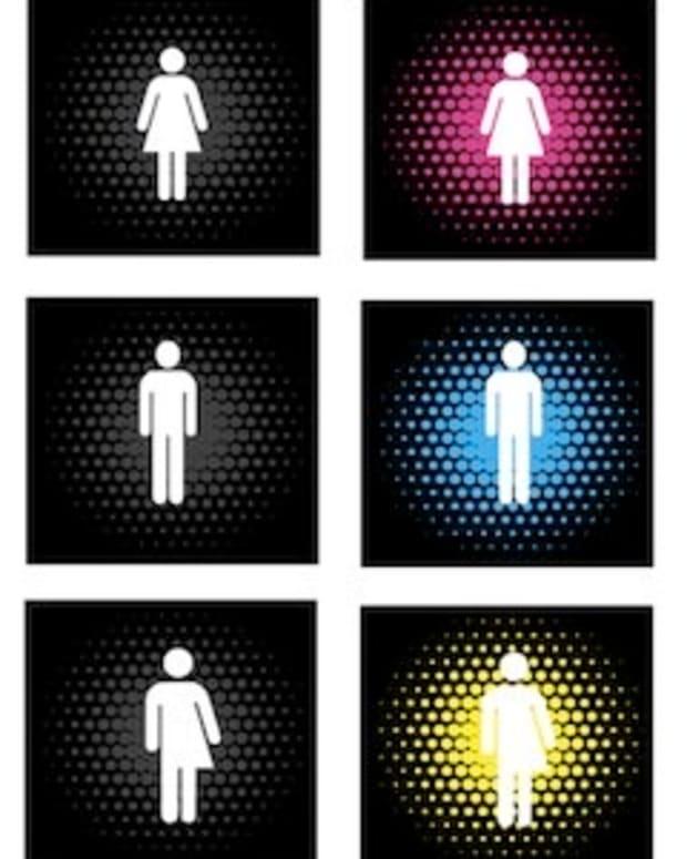 gender-shema-theory