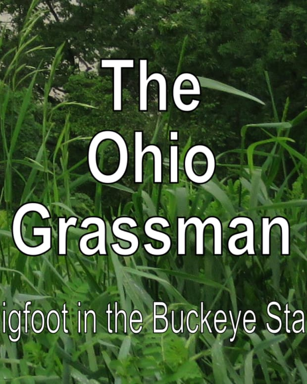 bigfoot-sightings-ohio-grassman